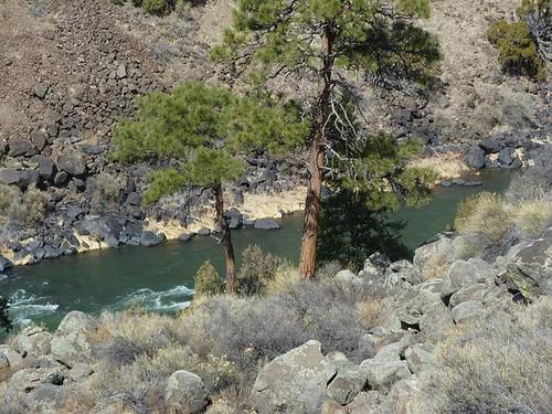Wild Rivers 43