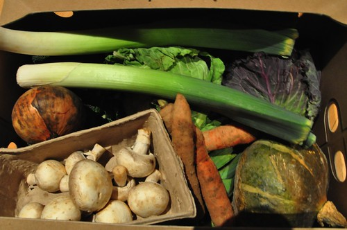 Riverford Seasons Vegbox
