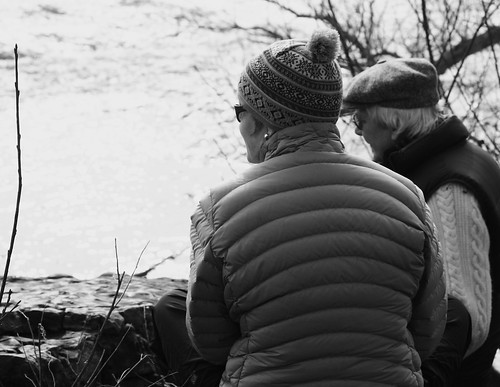 Admiring the Winter Rapids