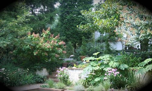 Courtyard Garden at South Darlington