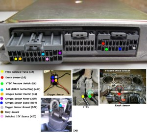 Pics of pleted vtec OBD1 P72 ECU wiring  HondaTech  Honda Forum Discussion