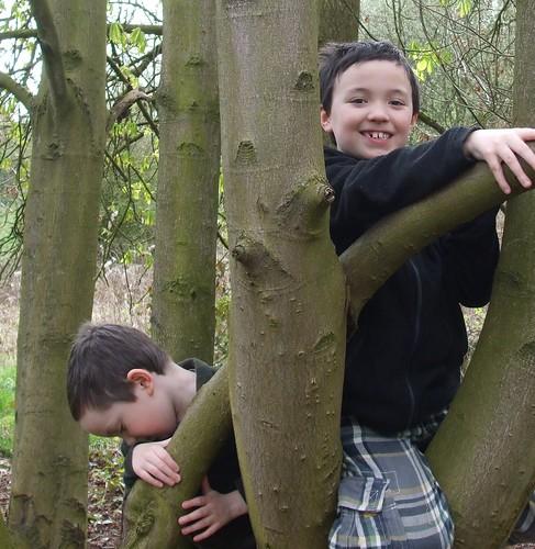 Climbing boys