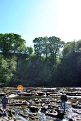 Aysgarth Falls 8