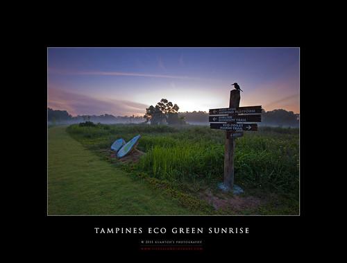 Tampines Eco Green Sunrise 17-04-2011 #1