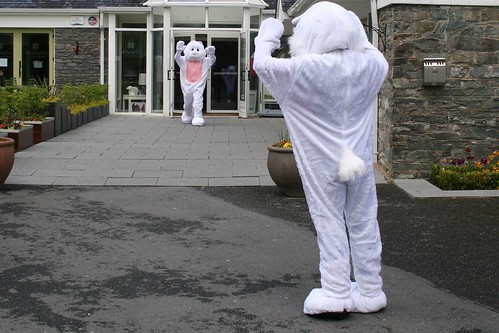 Kylemore Easter Bunnies