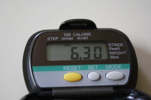 6.30 miles pedometer