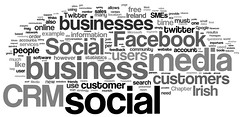 social crm dissertation wordle