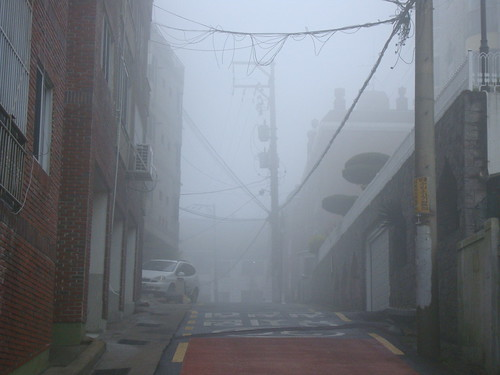 Fog on Dalmaji