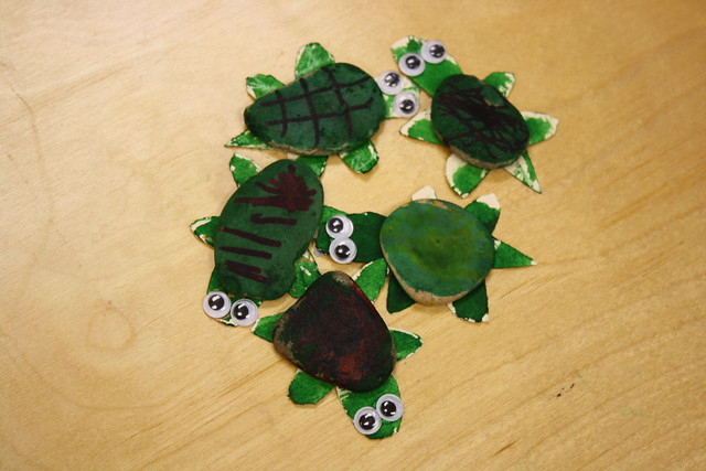 turtles • t week - 6