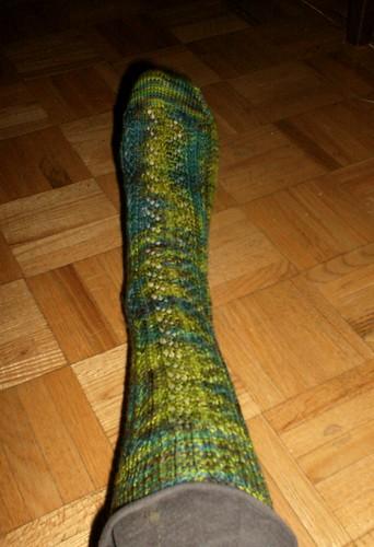 La Vie de Bois Socks - Sock 1