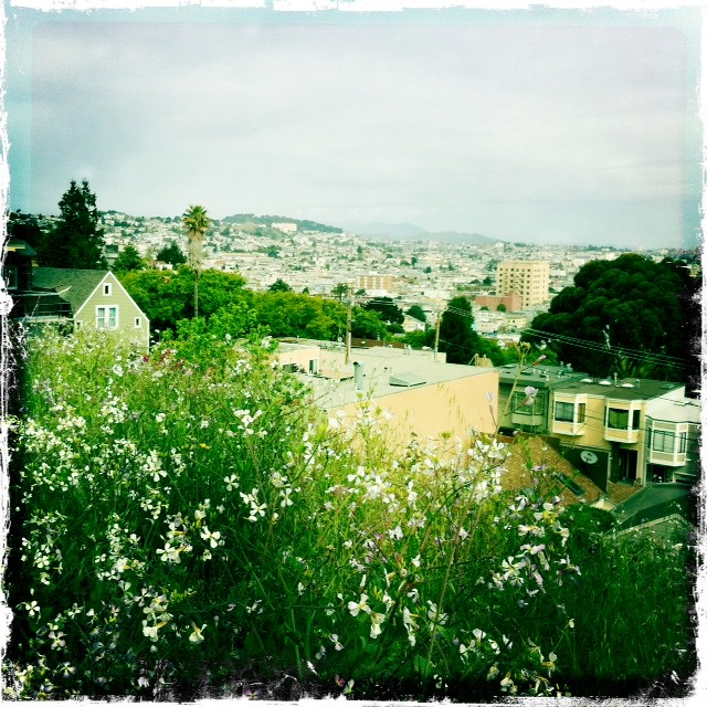 view from bernal heights park