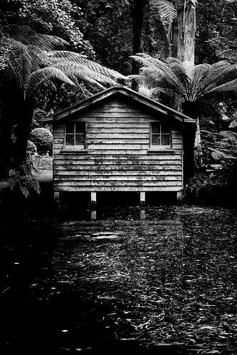 old shed by Matt Hovey (on hiatus. back soon!)