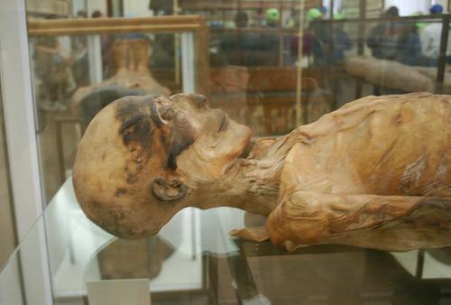Museu Egipci de Torí