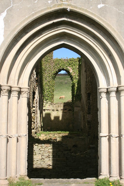 a cow through a castle ruin's doors
