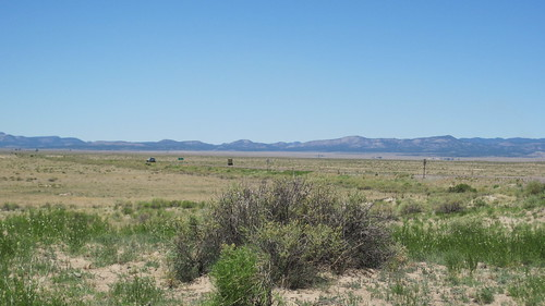 Picture from the Very Large Array