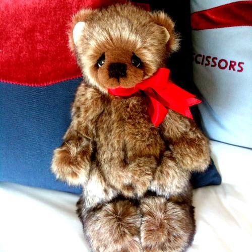 Howard the bear from York
