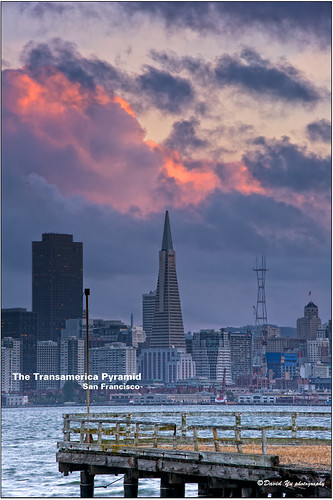 The Transamerica Pyramid San Francisco Sunset moment by davidyuweb