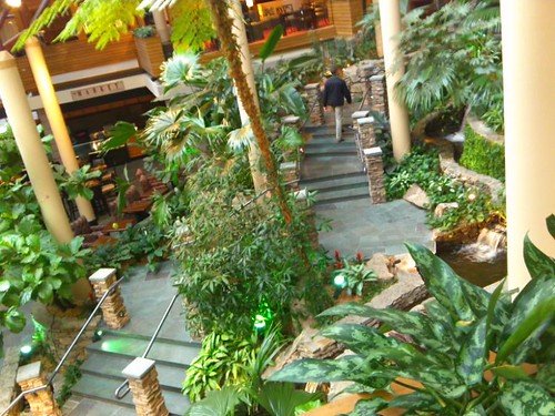 The jungle in the hotel lobby where JordanCon III was held