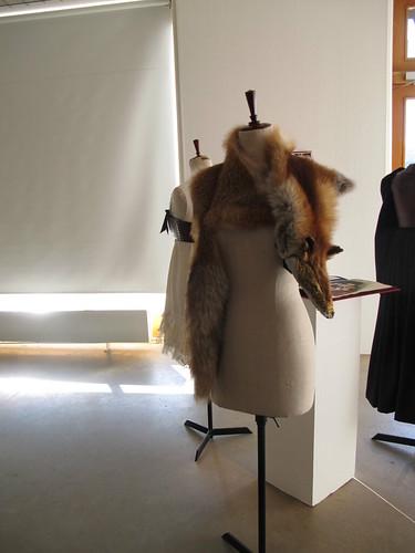 bara baras - exhibition fox