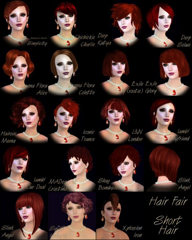 Hair Fair 2011 Short Hair