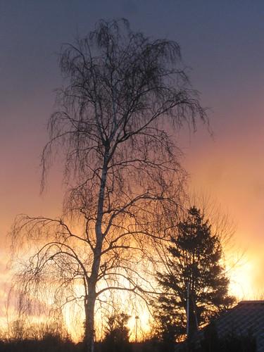 Sky Easter Morning 2012