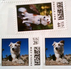 Zazzle Custom Stamps