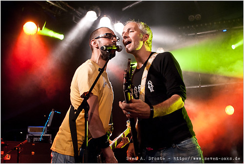 Dave Naithani & Peter Stollenwerk / Organic
