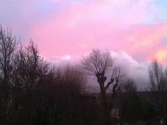 Sunset, January 2011, North London