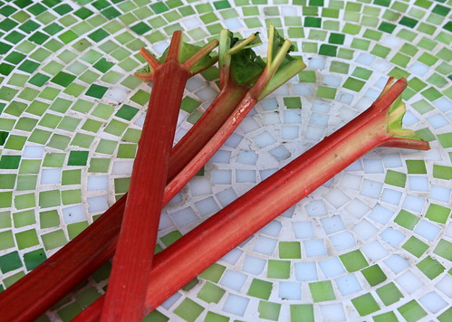 Fresh Rhubarb stalks for jam