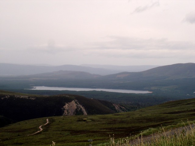 Cairngorms Natural Reserve