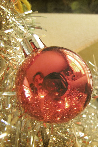 Holidays Day 8 - Reflecting on the Season