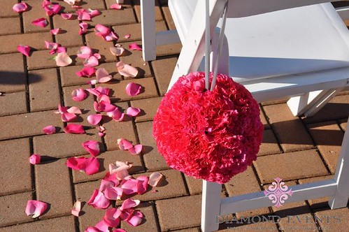 Wedding Ceremony Aisle with Pink Pomander Balls