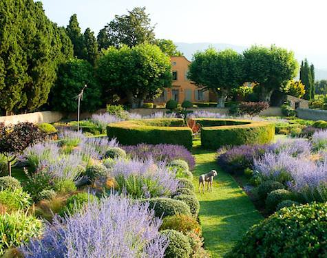 Le Pavillon de Galon in Provence garden