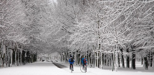 Kids Biking In The Snow