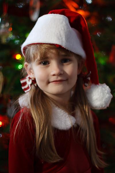 Santa's little helper in front of the tree