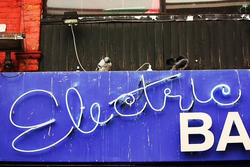 Electric Ballroom Birds