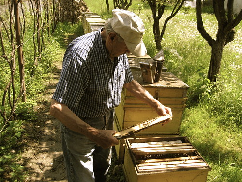 My grandfather, the beekeeper