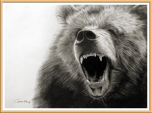 Grizzly Roars by Charles Black