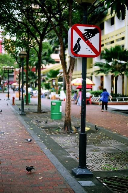 50 mm, f/1.4, 1/250, 0/-. Film: Kodak 160NC. Camera: Nikon FM2.