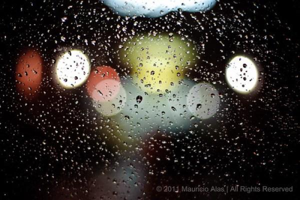 'Tis Rainin' Drops by The Torontonian