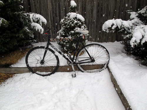 Commuting through the snow