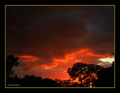 DSCN1018_1_72 -  Tampa Florida Sunset