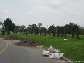 Escombros, canal de Bonanza