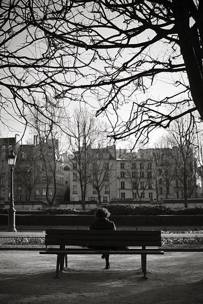 île de la cite - París