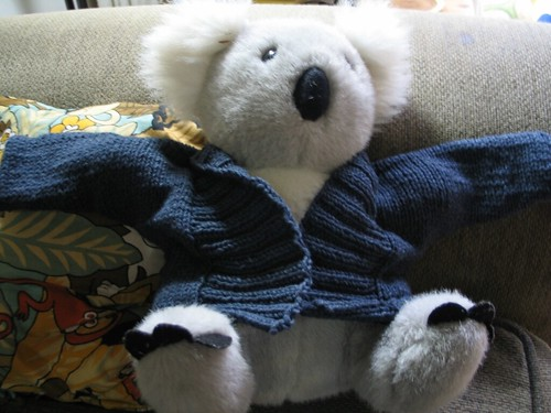 I think the Koala needs one with shorter sleeves