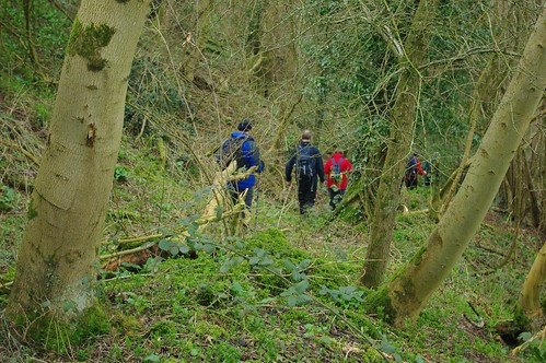 20110227-21_Descent through Caudwell woods into the Valley Brook Valley by gary.hadden
