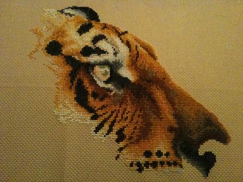 Regal Tiger - 26 March 2011