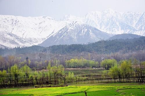 KashmirFromTheJeep