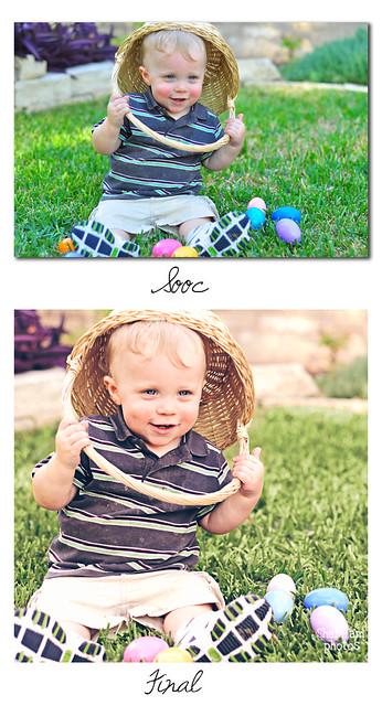compare_eggs
