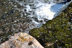 Aysgarth Falls 3